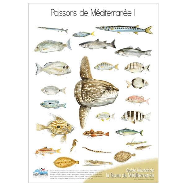 poissons-1