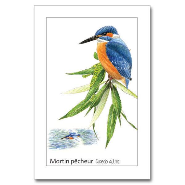 martin-1 copy