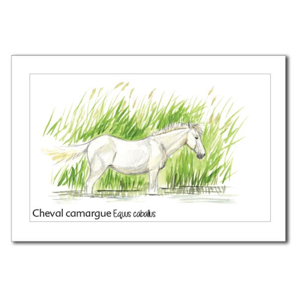 cheval copy