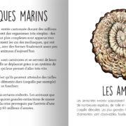 Animaux_prehistoriques-page3
