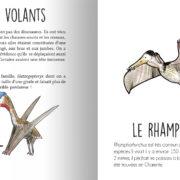 Animaux_prehistoriques-page4