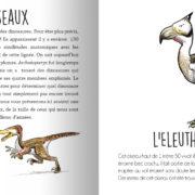 Animaux_prehistoriques-page7