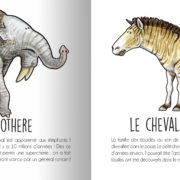 Animaux_prehistoriques-page9