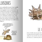 animaux_mediterranee_page4